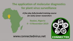 The application of molecular diagnositcs for plant virus surveillance